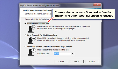 Choose character set - Standard is fine for English and other West European languages.
