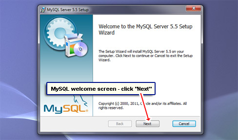 MySQL welcome screen - click the Next button.