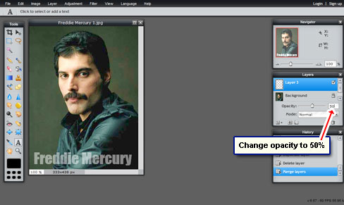Change opacity of the watermark layer