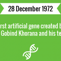 First artificial gene created by Har Gobind Khorana and his team.