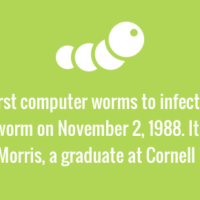 The first computer worm was written by Cornell graduate