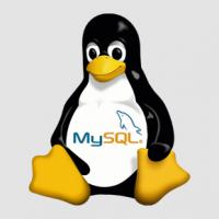 Installing MySQL on Linux