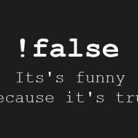 joke-false-itss-funny-because-its-true