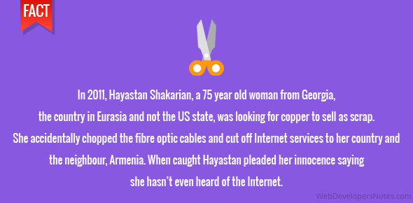 In 2011, Hayastan Shakarian, a 75 year old woman from Georgia, the country in Eurasia and not the US state, was looking for copper to sell as scrap. She accidentally chopped the fibre optic cables and cut off Internet services to her country and the neighbour, Armenia. When caught Hayastan pleaded her innocence saying she hasn't even heard of the Internet.