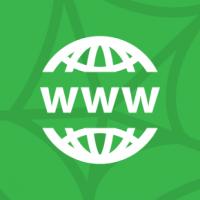 The World Wide Web (WWW) Basics
