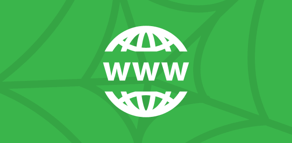 The World Wide Web (WWW) Basics