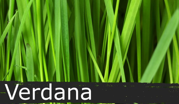 Verdana font on green grass